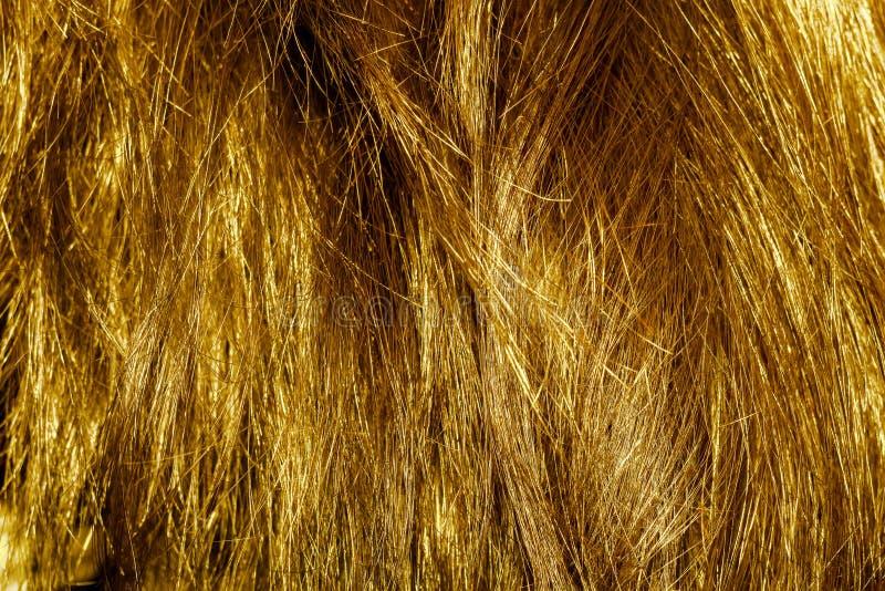 Texture de cheveu blond photographie stock