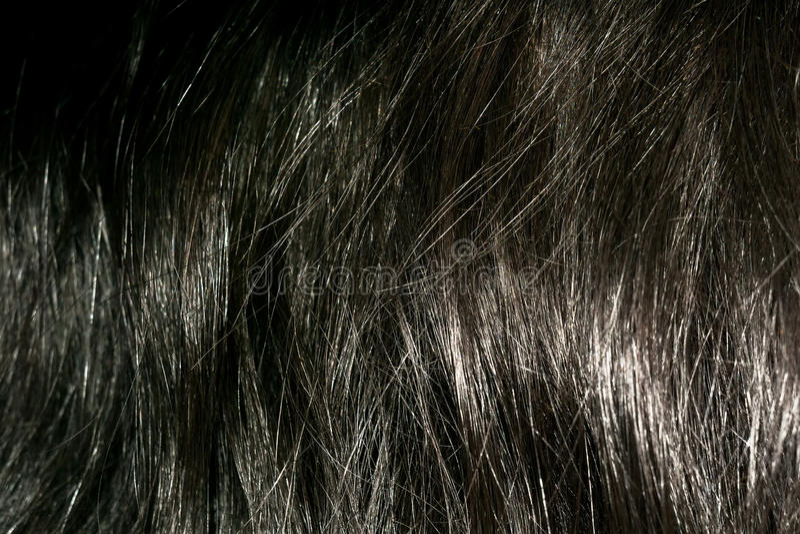 Texture de cheveux de Brown foncé photos stock