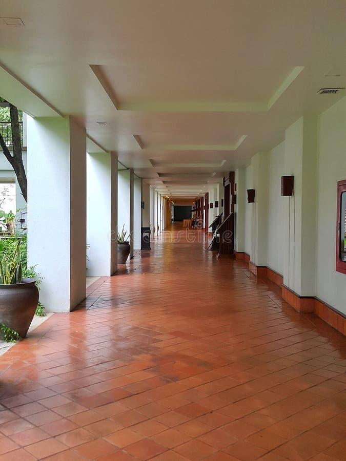 Texture de Clay Tile Flooring image stock