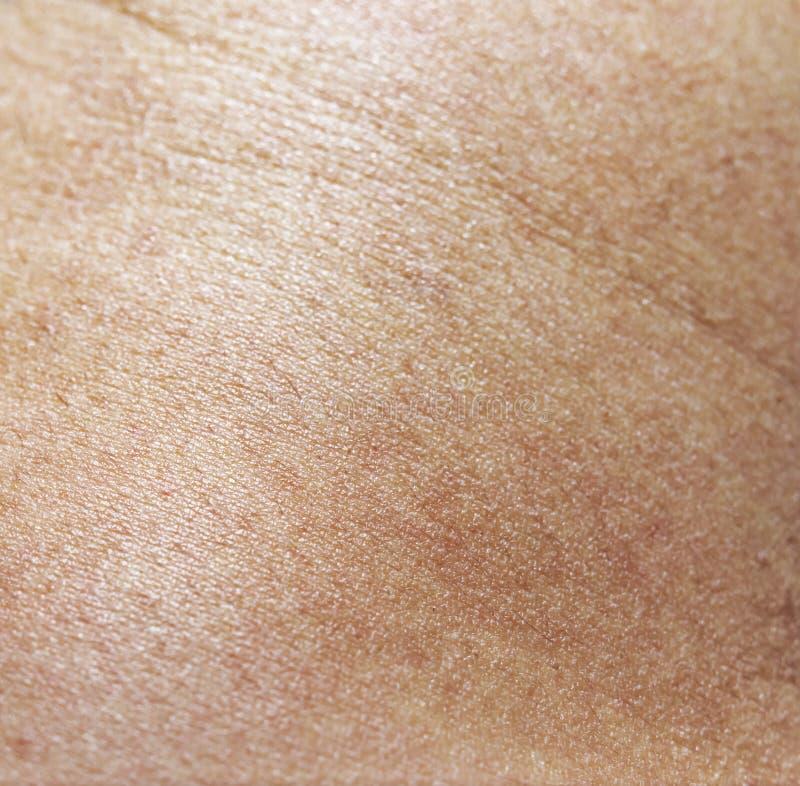 Texture de cuir humain de peau photos libres de droits
