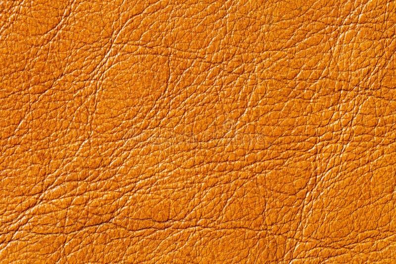 Texture de cuir véritable photographie stock libre de droits
