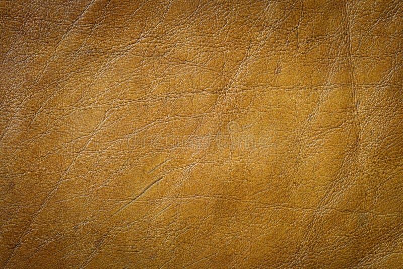 Texture de cuir véritable photos libres de droits