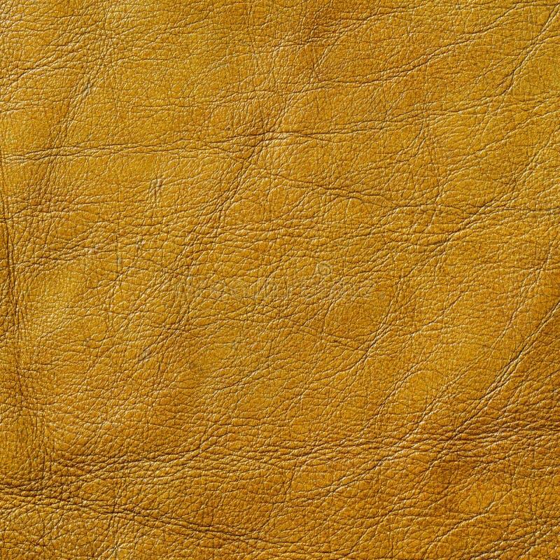 Texture de cuir véritable photographie stock