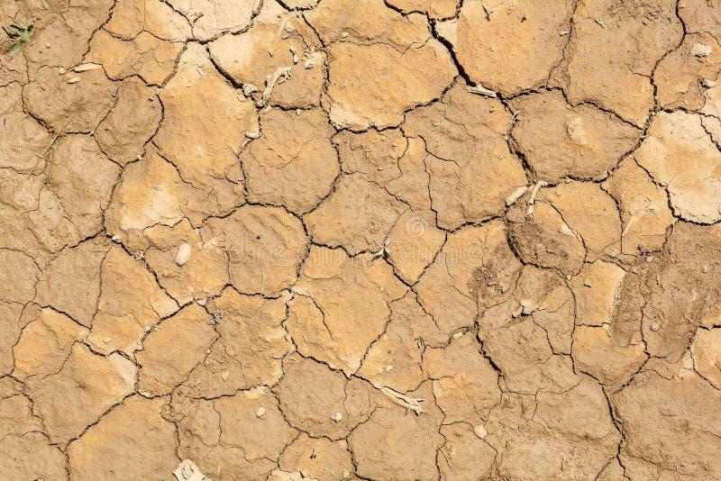Texture de désert sec, fond photographie stock libre de droits