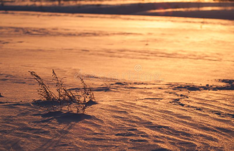 Texture de fond d'hiver belle et peu commune abstraite de neige, photos libres de droits