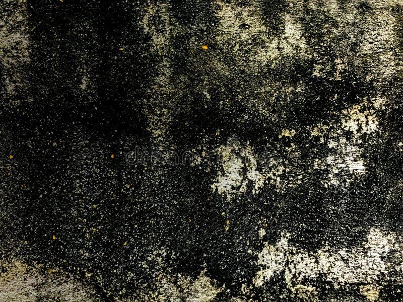Texture de fond de mur en béton de vintage du vieux mur âgé du bâtiment couvert par des champignons sur sa surface, DES de contex images libres de droits