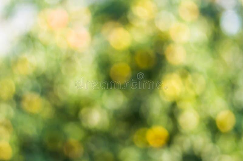 Texture de fond de tache floue de vert jaune photo libre de droits