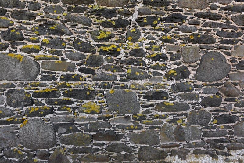 Texture de fond du lichen de vert jaune couvrant le blueston gris image stock