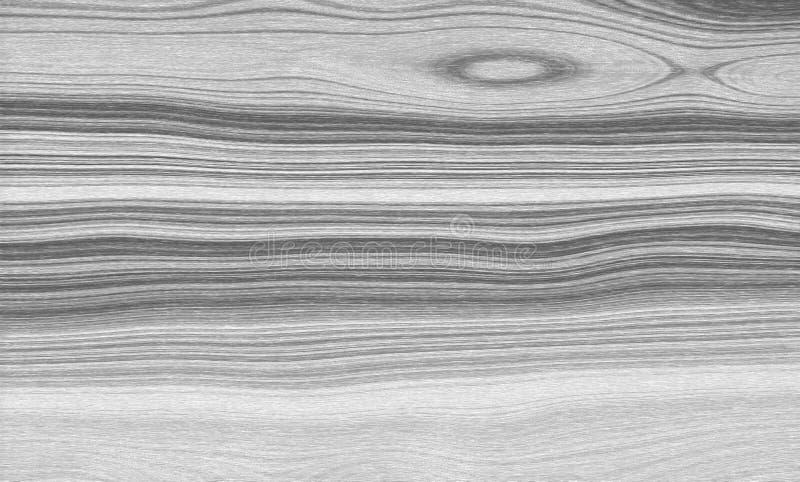 Texture de fond en bois de pin blanc, surface photos libres de droits