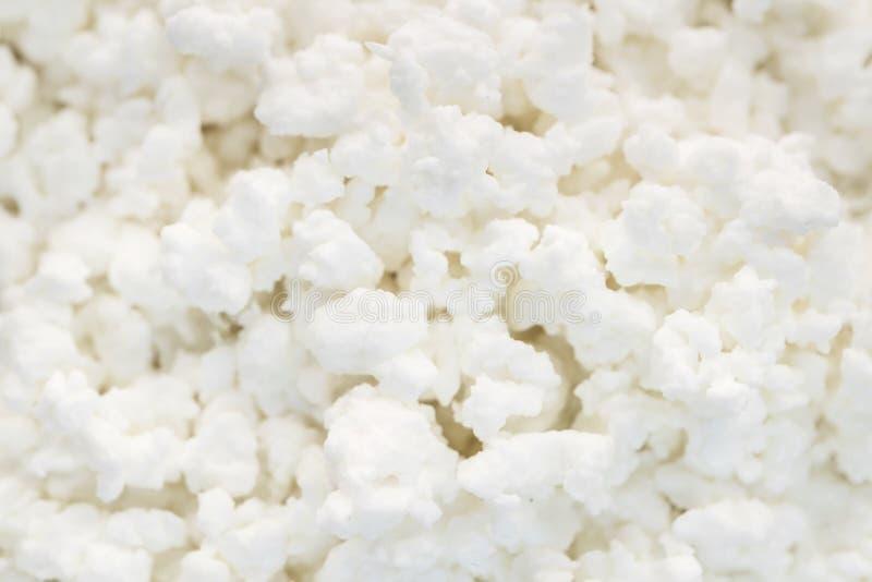 Texture de fromage blanc ou bacldround, produits sains de journal intime pour le petit déjeuner image stock