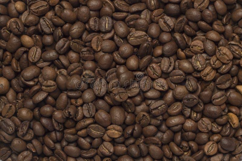 Texture de grains de café image stock