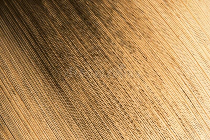 Texture de la gaine externe d'une fleur de palmier photo stock