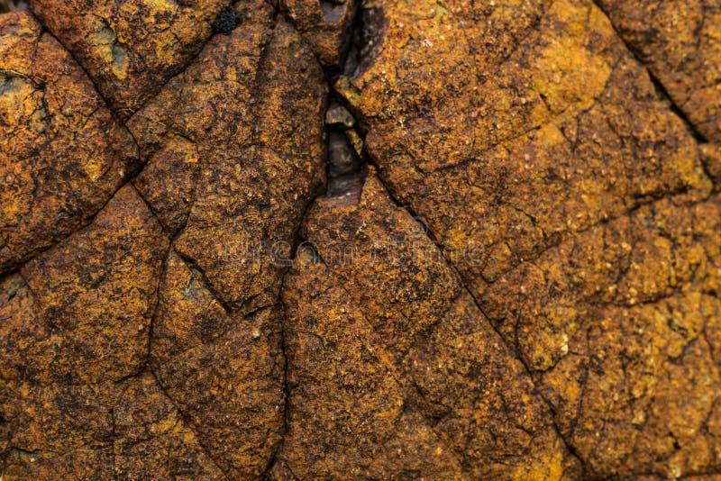 Texture de mur de roche, naturelle photo libre de droits
