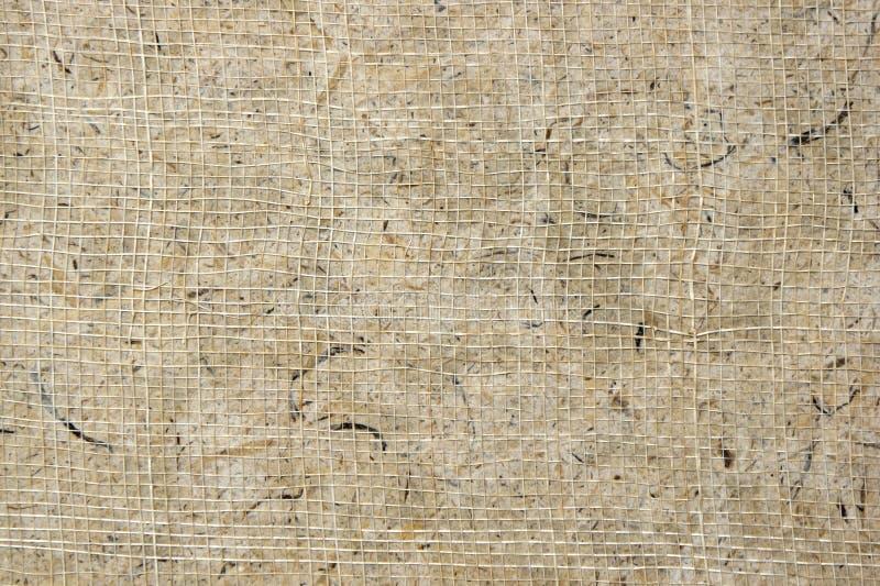 Texture de papier de carton de paume photos stock