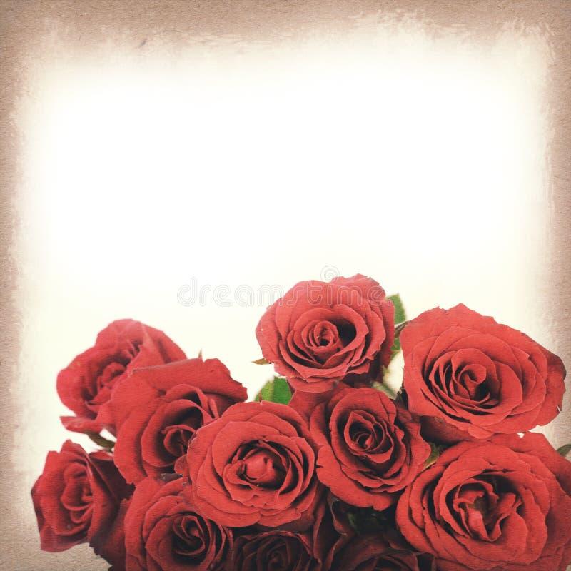 Texture de papier de vintage, bouquet de roses rouges pour le fond photos libres de droits