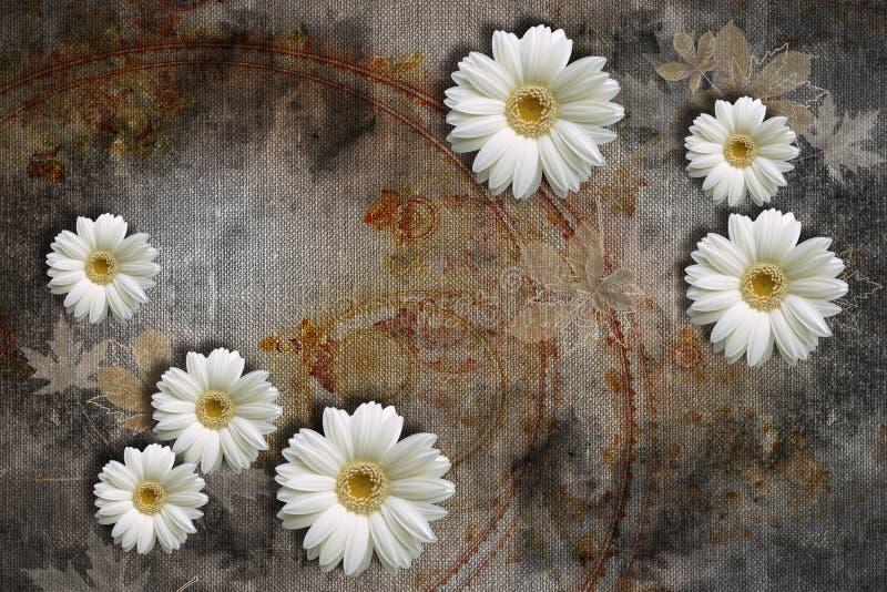 texture de papier peint 3d, chamomilles blanches sur textures de toile abstraite images libres de droits