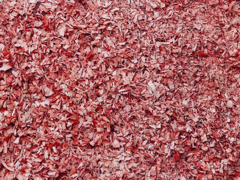 Texture de petite sciure dans la couleur rouge Objet artistique Matériel de concepteur photo stock
