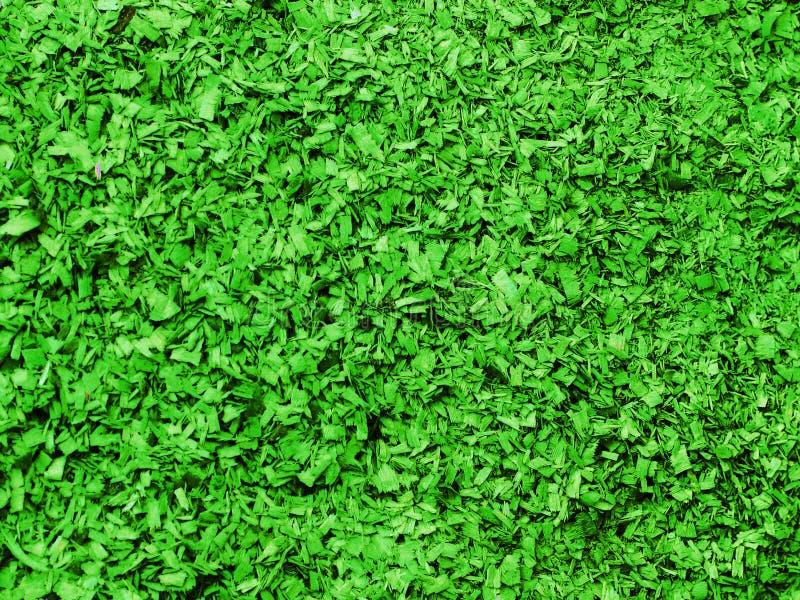 Texture de petite sciure dans la couleur verte Objet artistique Matériel de concepteur image stock