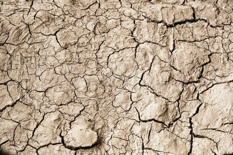 Texture de sol sec image stock