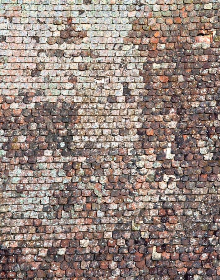 Texture de toit de bardeau photographie stock libre de droits