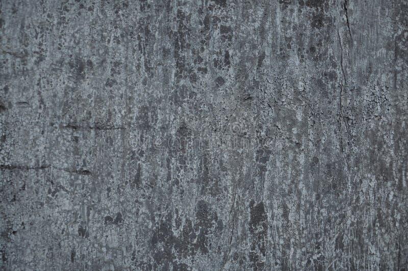 Texture de vieux ruberoid photographie stock libre de droits