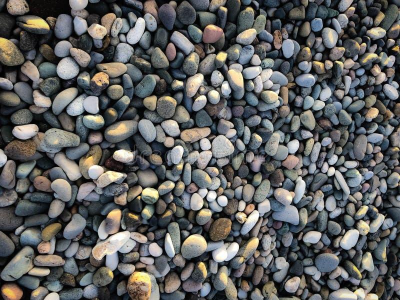 Texture des beaucoup beau rond multicolore et pierres naturelles lisses ovales, cailloux Le fond photos libres de droits