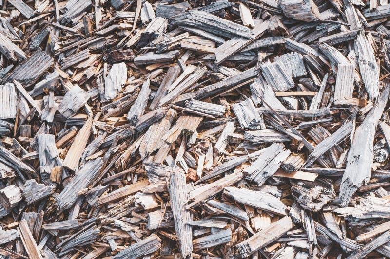 Texture des déchets de bois fins photo libre de droits