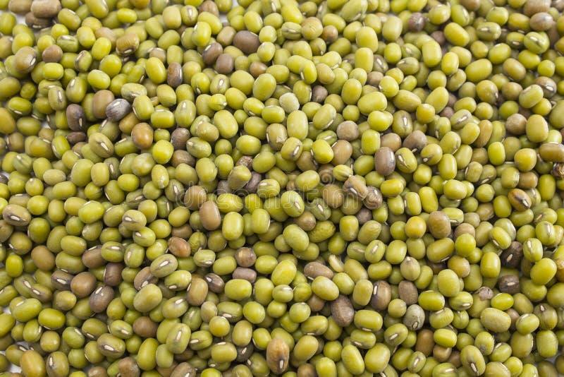 Texture des fèves de mung vertes images stock
