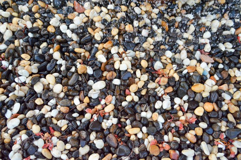 Texture different unusual stones wet with water from different colors black white red yellow brown natural round. The background royalty free stock photos