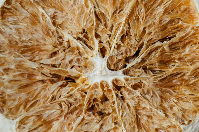 Texture of dried citrus.Macro royalty free stock photography