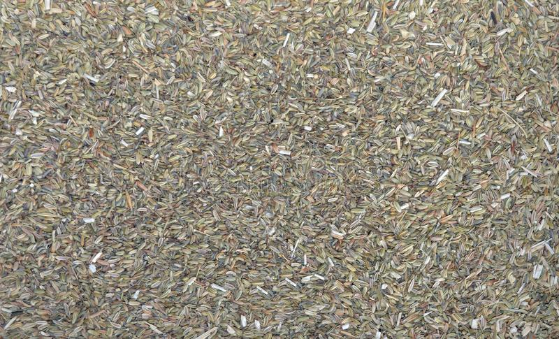 Dried Fennel Seeds Tea Texture royalty free stock photography