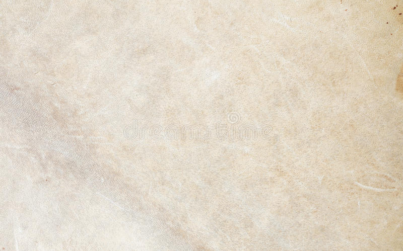 Texture of drum leather made of cow leather. Suit for use as background stock images