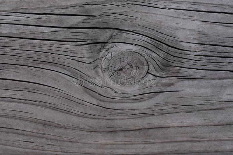 Texture du fond en bois photographie stock