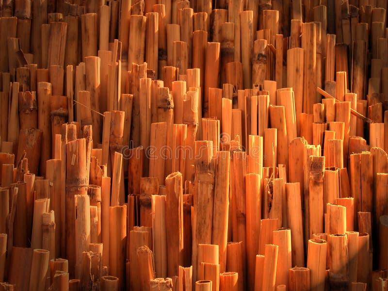 Texture en bambou abstraite image stock