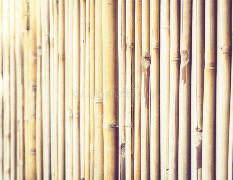 Texture en bambou de fond avec l'espace de copie pour le texte photos libres de droits