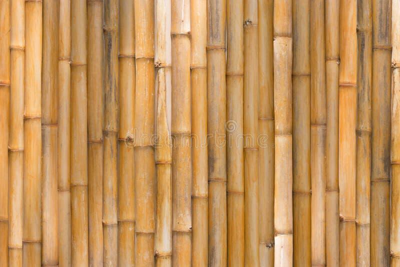 Download Texture En Bambou, Fond En Bambou De Barrière Image stock - Image du ligne, culture: 76087289