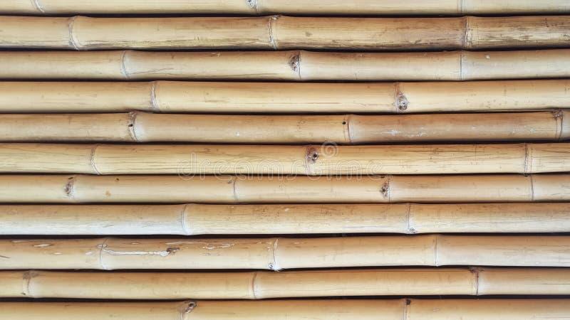 Texture en bambou en gros plan et ombres latérales avec les milieux naturels de modèles pour le concepteur, extérieur d'intérieur image libre de droits
