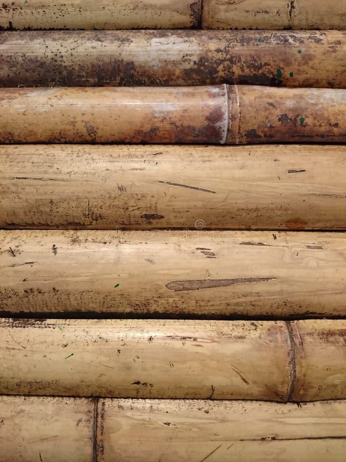 Texture en bambou naturelle de fond de barrière Écorce sèche jaune empaquetée photo libre de droits