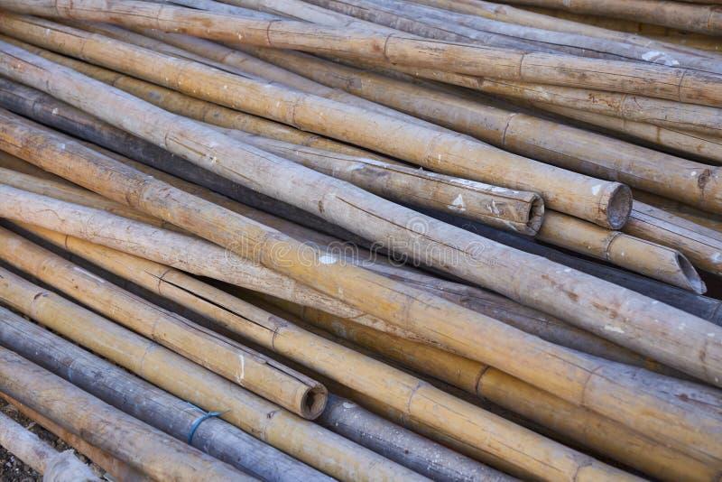Texture en bambou sèche photos stock