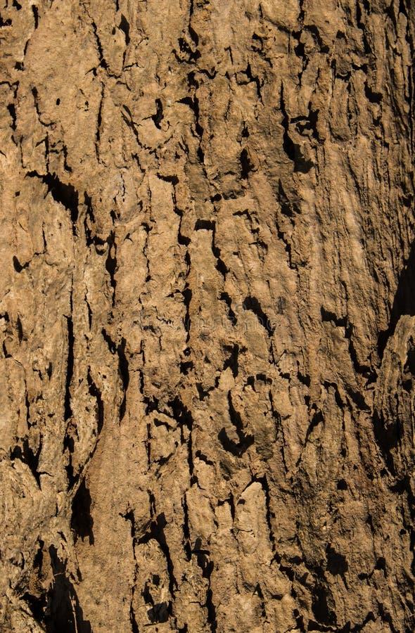 Download Texture en bois photo stock. Image du detail, protection - 56490508
