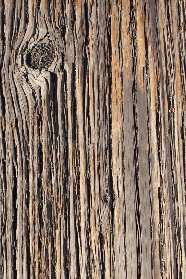 Texture en bois abstraite photo libre de droits