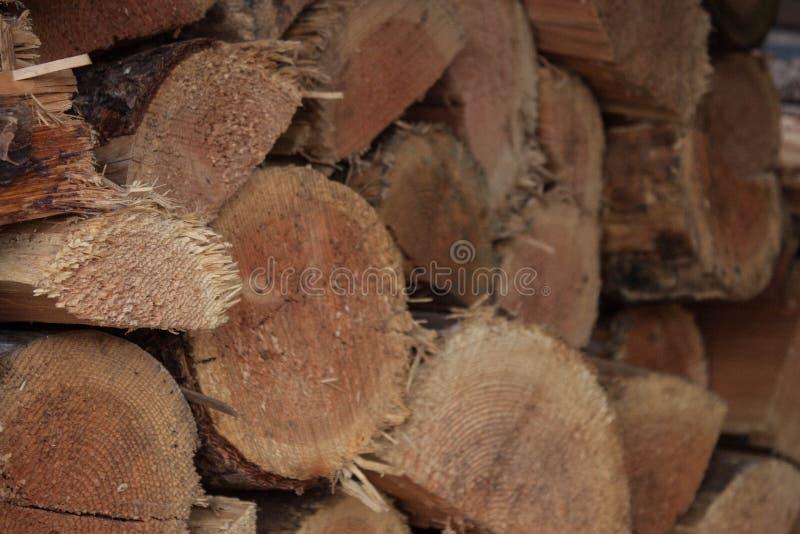 Texture en bois approximative dans une pile de bois images libres de droits