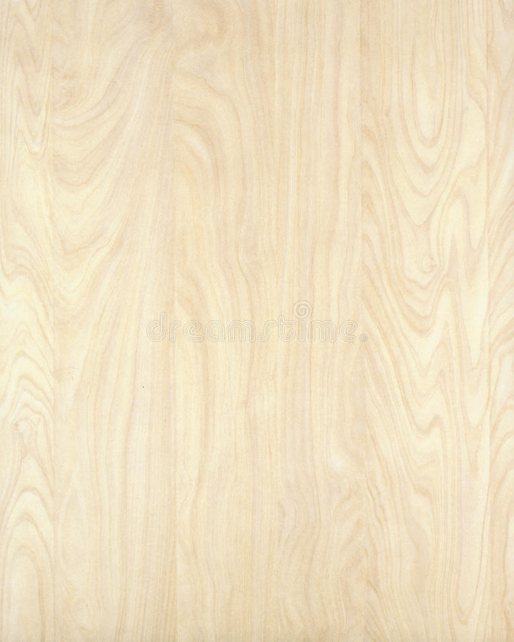 Texture en bois background_birch_10 photos stock