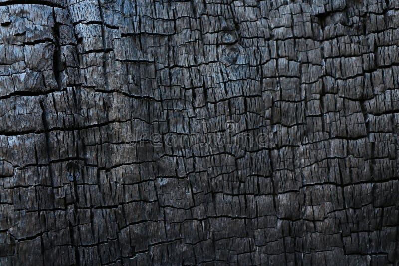 Texture en bois brûlée image stock