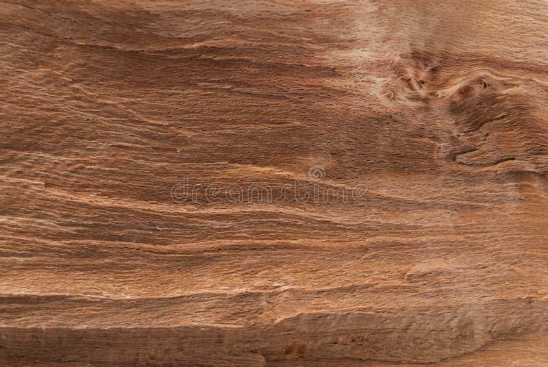 Texture en bois cru pour la conception et la décoration photo libre de droits