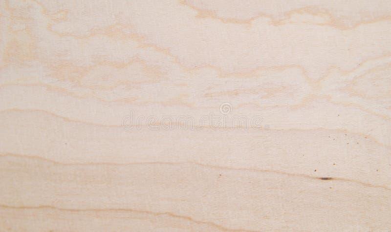Texture en bois d'érable images libres de droits