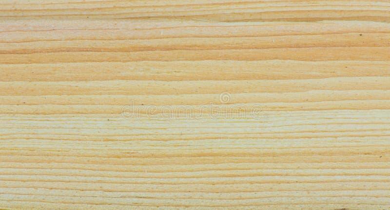 Texture en bois d'arbre de cèdre photo stock