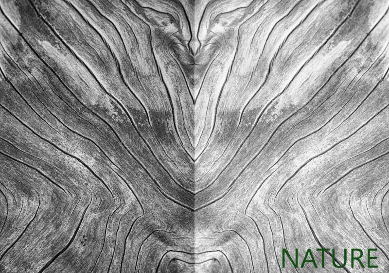 Texture en bois dans le résumé images stock