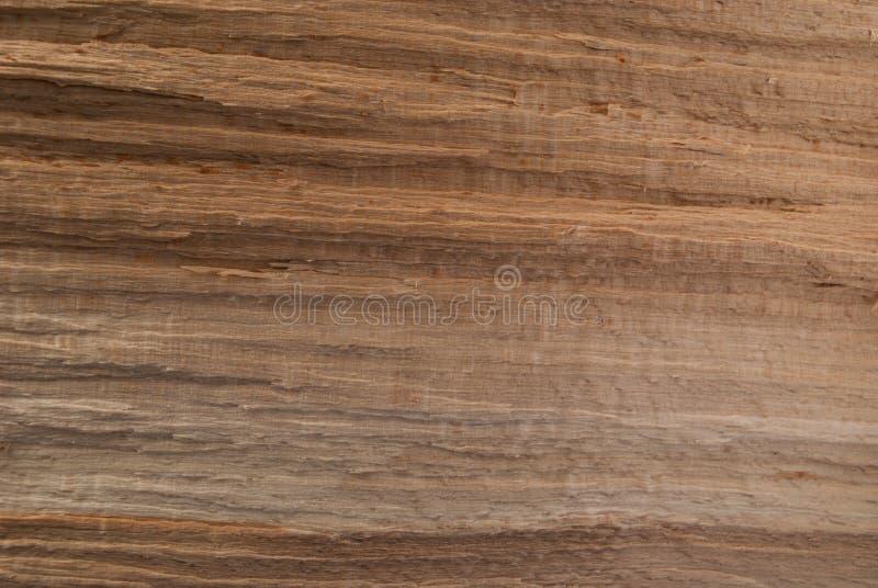 Texture en bois de Brown Calibre vide photo libre de droits