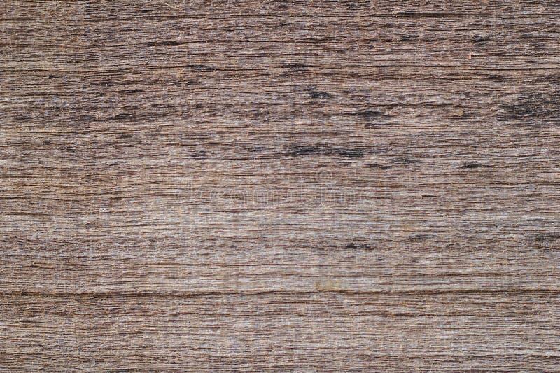 Texture en bois de Brown Fond abstrait, calibre vide brun en bois naturel de placage Champignon et moule sales sur la surface en  image stock